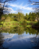 Mirror Pond. A view out upon a still pond on a beautiful day in early spring with the newly greening trees reflected in the glass-like water Royalty Free Stock Image