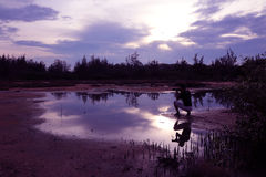 Mirror of purple sky with shadow of photographer. Stock Image