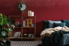 Mirror in red bedroom interior. Blanket on green bed in red modern bedroom interior with gold round mirror above shelves royalty free stock photos