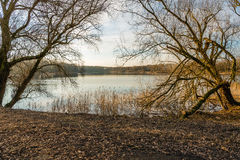 Mirror smooth lake framed by two bare trees Stock Image