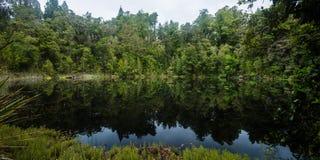 Mirror Tarn, New Zealand. Mirror Tarn, Oparara Basin, Kahurangi National Park, West Coast, New Zealand Stock Photo