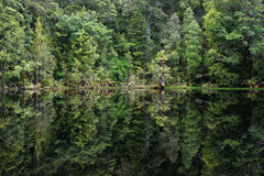 Mirror Tarn, New Zealand Royalty Free Stock Photography