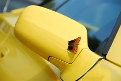 Mirror of yellow sports car. Side mirror of yellow sports car with butterfly sitting on - it landed just as I was taking the picture Stock Photos