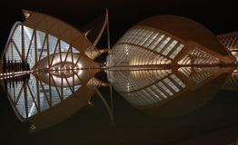 Mirrored Building. Mirrored museum from Valencia. It's a deep night landscape Royalty Free Stock Images