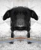 Mirrored Dog. Artistic image of a Dog, Mirrored Low poly Royalty Free Stock Photo