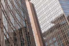Mirrored glass on building Royalty Free Stock Image