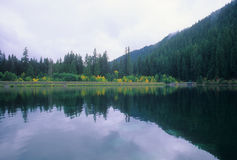 Mirrored Lake Royalty Free Stock Photo