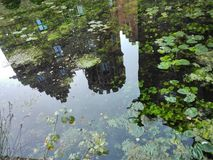 mirroring stock afbeelding