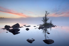 Mirroring. Nice quiet morning with a small island and rocks in the water Royalty Free Stock Image