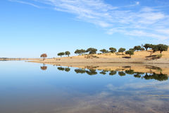 Mirroring trees in blue lake, Alentejo, Portugal Stock Images