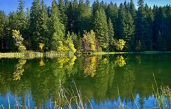 Mirroring on the water level of the Vrbicke tarn in Demanovska valley in Slovakia. Royalty Free Stock Photography