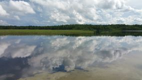 Mirror. Lake in summer in Moscow region stock photo