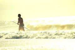 Mirt plaża przy wschodem słońca Obrazy Stock