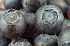 Mirtilli freschi sulla vecchia tavola di legno Marmellata d'arance di compito Frutta sana della foresta Nutrizione per gli atleti Fotografie Stock