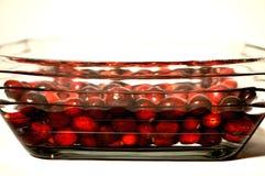 Mirtilli rossi freschi in acqua in una ciotola immagini stock