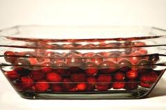 Mirtilli rossi freschi in una ciotola con acqua fotografie stock libere da diritti