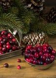 Mirtilli rossi organici freschi per il Natale Immagine Stock
