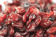 Mirtilli rossi secchi Fotografia Stock