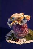 Mirtilli rossi in zucchero in polvere Immagine Stock