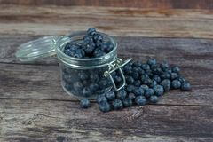 Mirtilli in yogurt organico fresco in vetro fotografie stock libere da diritti