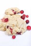 Mirtillo e biscotti bianchi del cioccolato Fotografie Stock Libere da Diritti