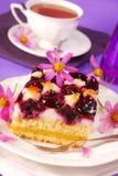Mirtillo e torta di noci di cocco Fotografia Stock Libera da Diritti