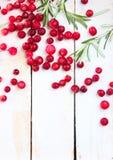 Mirtillo rosso e rosmarini su un fondo di legno Fotografia Stock Libera da Diritti