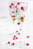 Mirtillo rosso fresco in cubetti di ghiaccio in vetri sul modello bianco del fondo Fotografia Stock