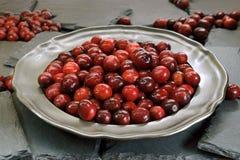 Mirtillo rosso fresco e rosso I frutti sul di piastra metallica si trovano sui piatti neri dell'ardesia fotografia stock