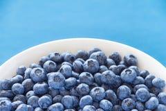 Mirtilos na bacia branca no backround azul colorido Fotografia de Stock Royalty Free