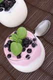Mirtilos no iogurte fotografia de stock