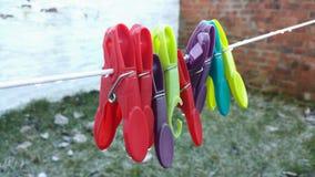 Mis colores del jardín en el invierno Imagen de archivo libre de regalías