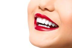 Mis dientes perfectos Imagen de archivo libre de regalías