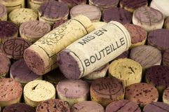 Mis en bouteille Royalty Free Stock Image