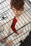 Mis en cage photo libre de droits