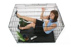 Mis en cage photo stock