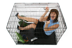 Mis en cage Photos stock