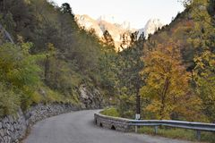 Mis valley road in autumn. Colors; stone wall; asphalt; forest; green; orange; leaves; trees; Autumn; mountain; beeches; firs Stock Photos
