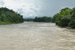 Misahualli river in the amazon jungle Royalty Free Stock Photography