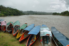 Misahualli river in the amazon jungle Stock Photography