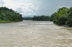 Misahuallirivier in de wildernis van Amazonië Royalty-vrije Stock Fotografie