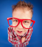 Misbehave concept. Funny five years old boy with expressive face Stock Photography