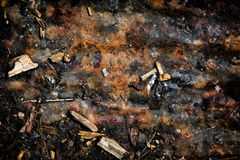 Misc Debris 2. A detailed close up of a mix of organic and inorganic miscellaneous debris. A great texture image for a background or overlay royalty free stock photos