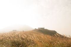 Miscanthus mit Steinhaus, Sonnenuntergang-Spitze in Hong Kong lizenzfreie stockbilder