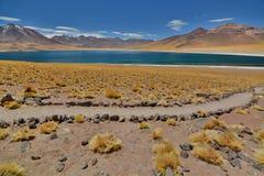 Miscanti湖或拉古纳Miscanti Los佛拉明柯舞曲国家储备 安托法加斯塔地区 智利 库存照片