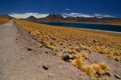Miscanti湖或拉古纳Miscanti Los佛拉明柯舞曲国家储备 安托法加斯塔地区 智利 库存图片