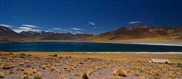 Miscanti湖或拉古纳Miscanti Los佛拉明柯舞曲国家储备 安托法加斯塔地区 智利 免版税库存照片