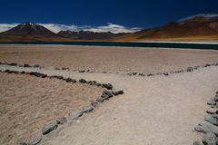 Miscanti湖或拉古纳Miscanti Los佛拉明柯舞曲国家储备 安托法加斯塔地区 智利 免版税库存图片