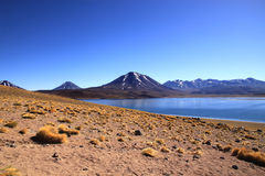 Miscanti湖(拉古纳Miscanti),智利 库存图片