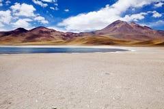 Miscanti盐水湖,智利 库存照片